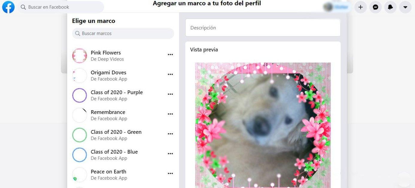 Cómo usar una foto de perfil temporal en Facebook